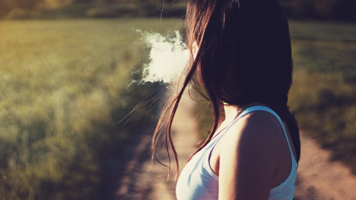 So lernte ich den Online-Shop SmokeSmarter kennen
